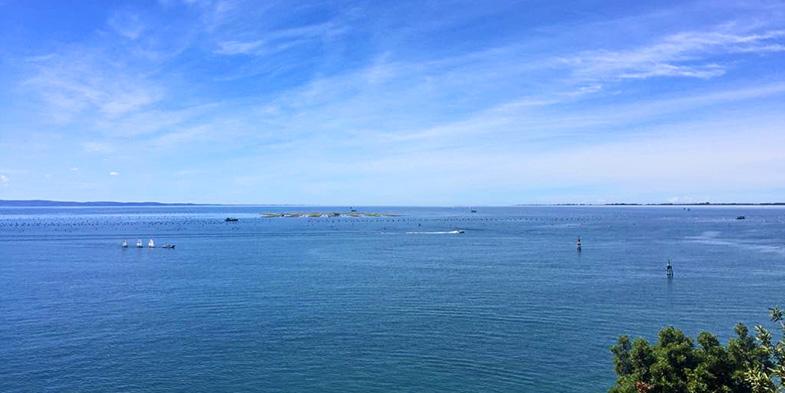 Duino sea